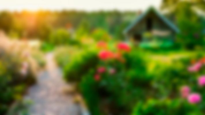 Обработка садового участка